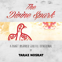 The Divine Spark CD (Originally $15)
