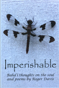 Imperishable (Originally $12)